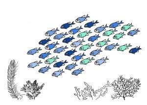 banc-poissons-2