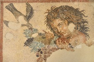 Malta, Rabat, Domus Romana museum, Mosaïc of the Fruit bearer.